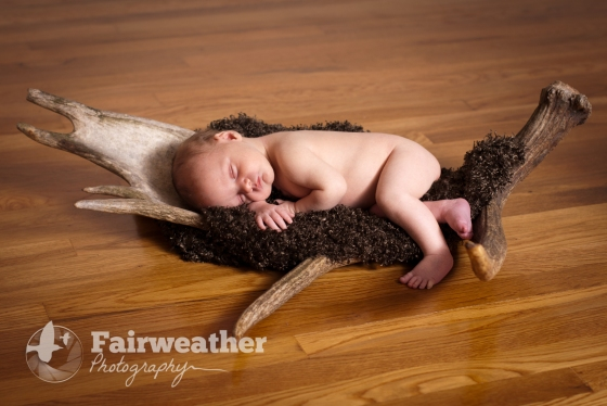 Newborn Baby in a Moose Paddle