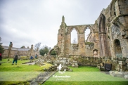 Bolton Abbey-2570
