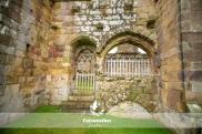 Bolton Abbey-2571