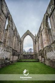 Bolton Abbey-2595