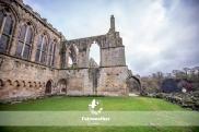 Bolton Abbey-2636