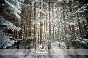 frosty_winter-4073
